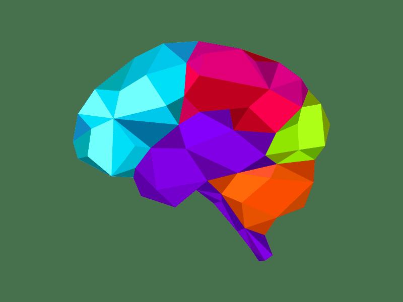 Multi-coloured brain